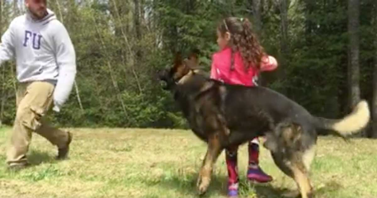 Friendly Dog Plays With Little Girl, Then She Gives Him ...